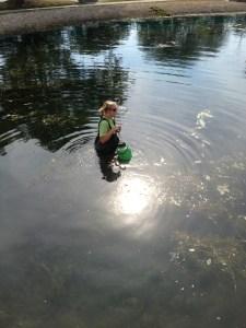 Pond Appication