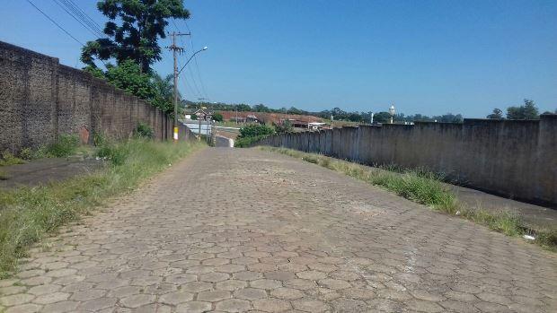 Rua com calçadas coberta pela mato