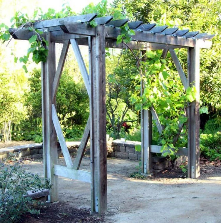 1. Pergola is a simple and beautiful structure that will decorate your garden