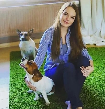 What dogs are the top Russian bloggers Youtube?