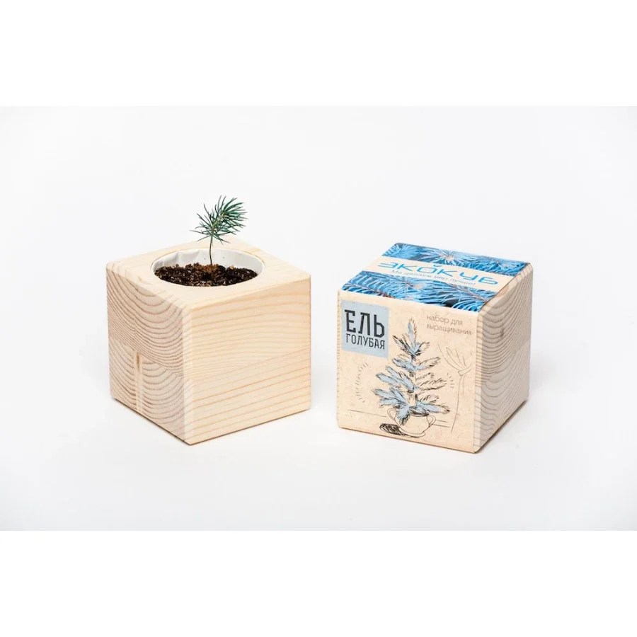 Growing kit Eco-Cube