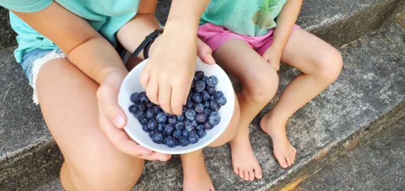 BC Blueberry Season: The Most Delicious Super Food #GoBlueBC 2