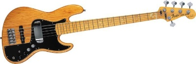 5 String Bass Guitar Info