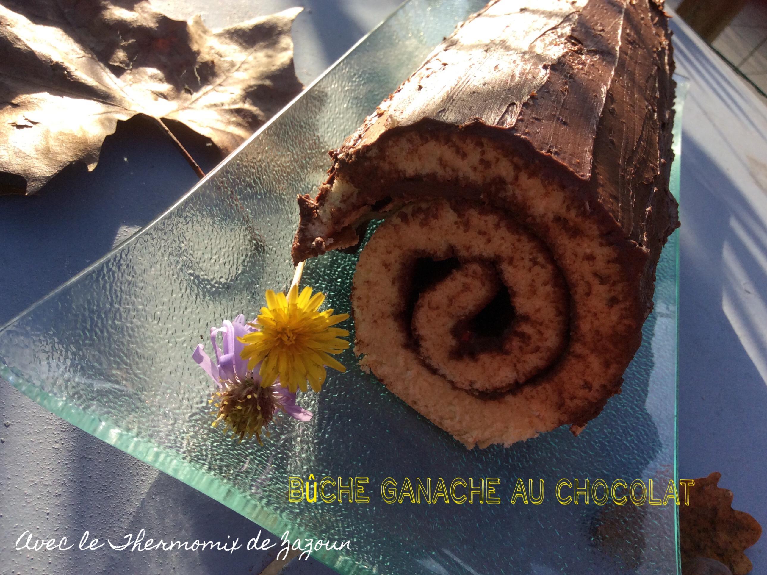 Gateau roule chocolat companion