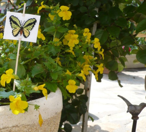 papillon-plantes.jpg