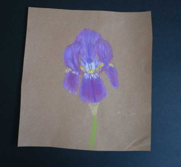 iris-pastel-sec-2.jpg