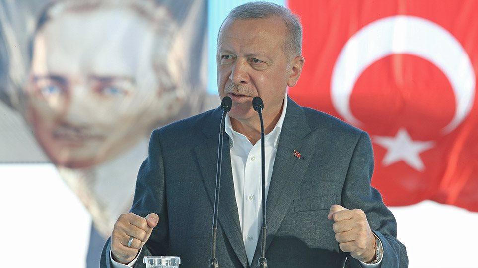 Erdogan proklisi arthro