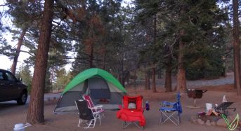 Our setup