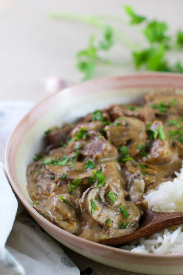 vegan beef stroganoff close up2