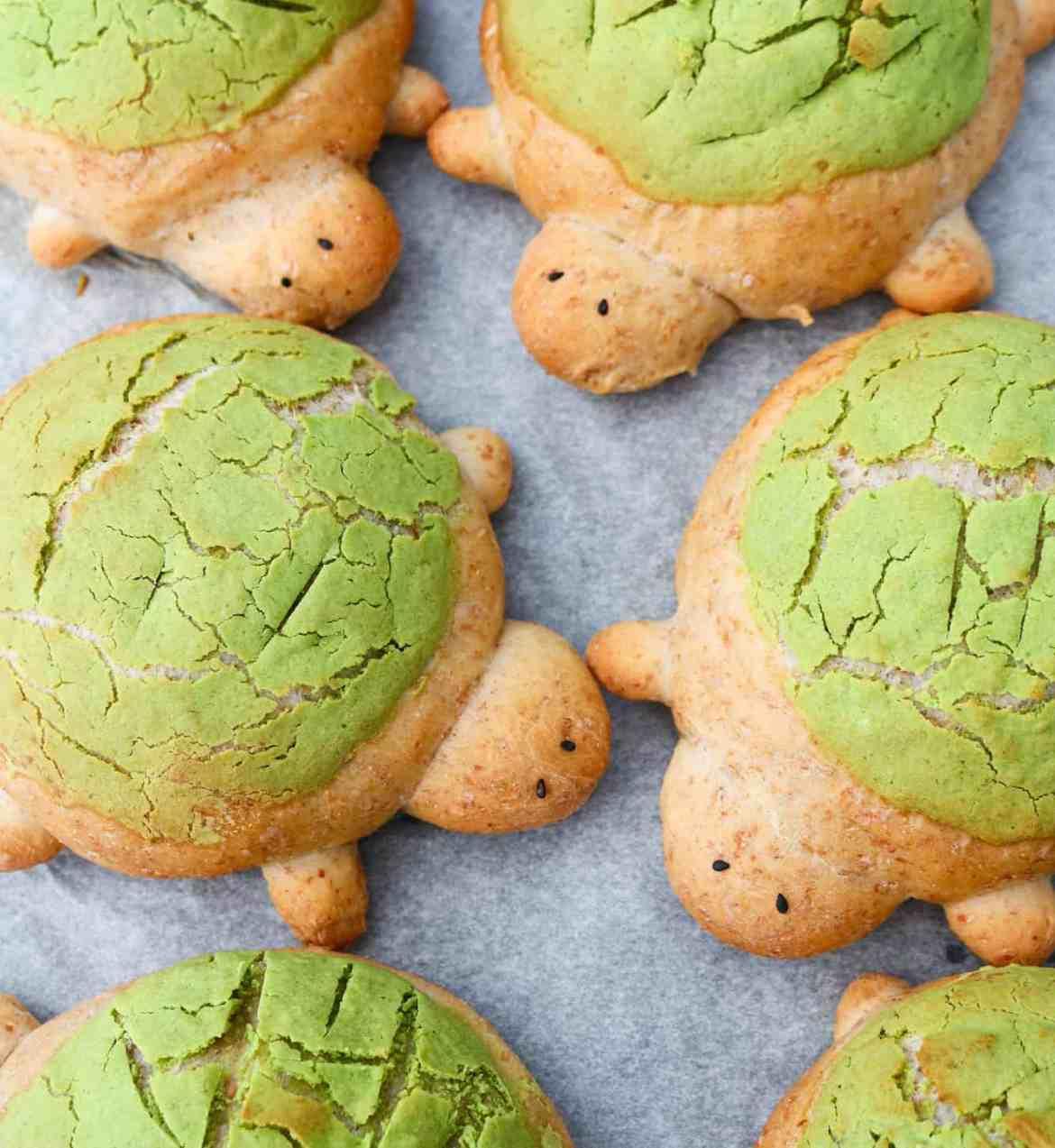Turtle Brioche Bread Buns FI