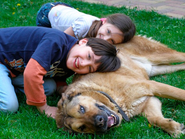 niños_perros_mascotas_1024.jpg
