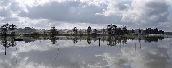 Campos junto ao Rio Pranto