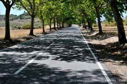bicicleta_comboio_cicloturismo_011