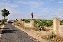 bicicleta_comboio_cicloturismo_020