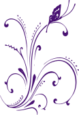 new-purple-butterfly-scroll-hi