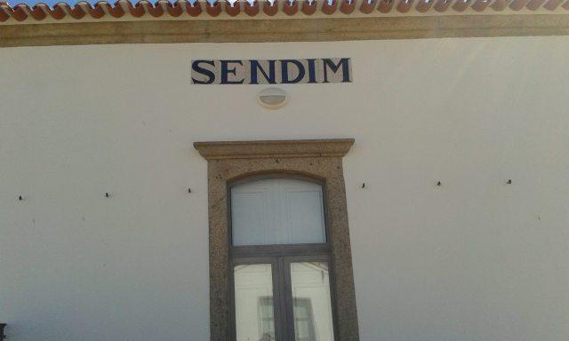 sendim_elisabete_figueiredo_agosto_01_2015