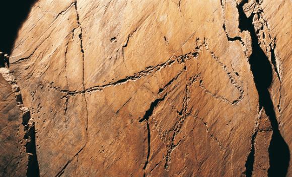Os-misterios-da-arte-paleolitica-do-Parque-Arqueologico-do-Vale-do-Coa