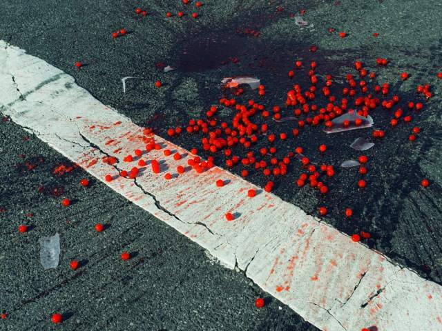 USA. New York City, NY. 2014. Cherries spilled on crosswalk.