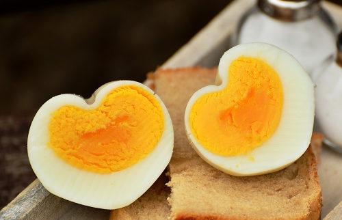 egg-1536990_500