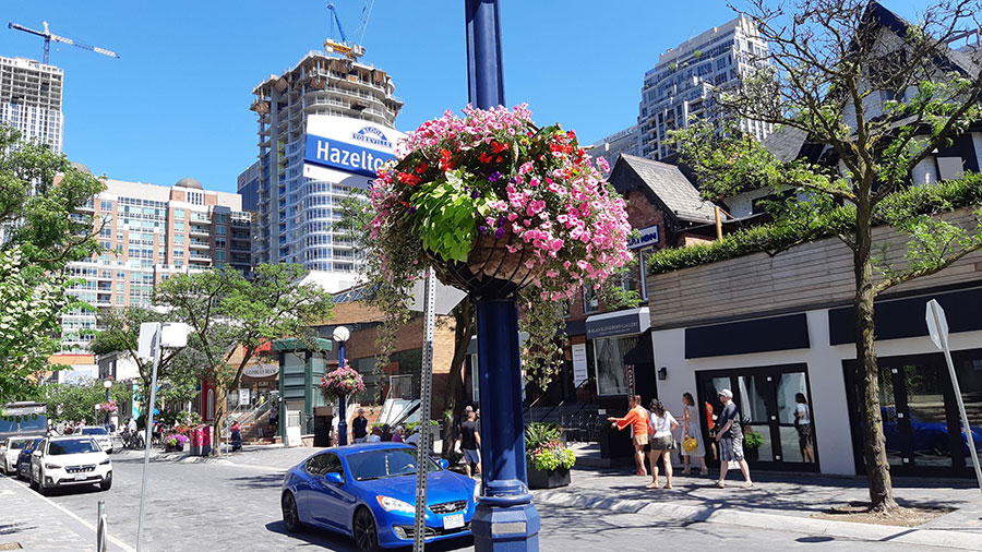Toronto-image-gallery-01