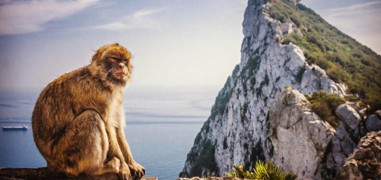 Gibraltar-stanca