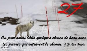 janvier-photocitation27