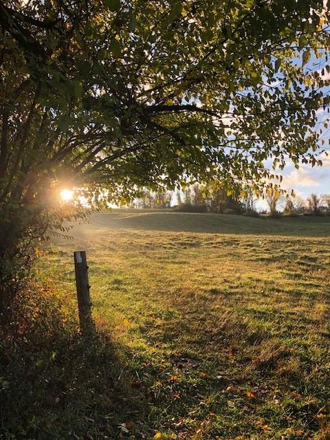 Fall Morning on the Applachian Trail