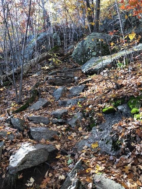 Applachian Trail near Bulls Bridge