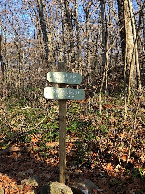 Paradise Lane Trail Junction