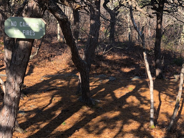Camping areas on Bear Mountain