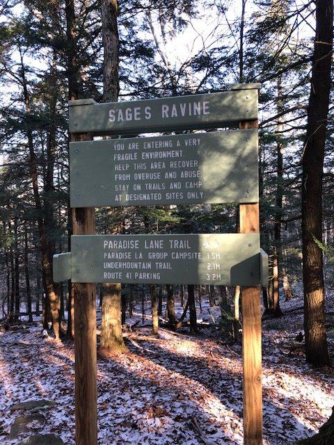 Junction for Sages Ravine