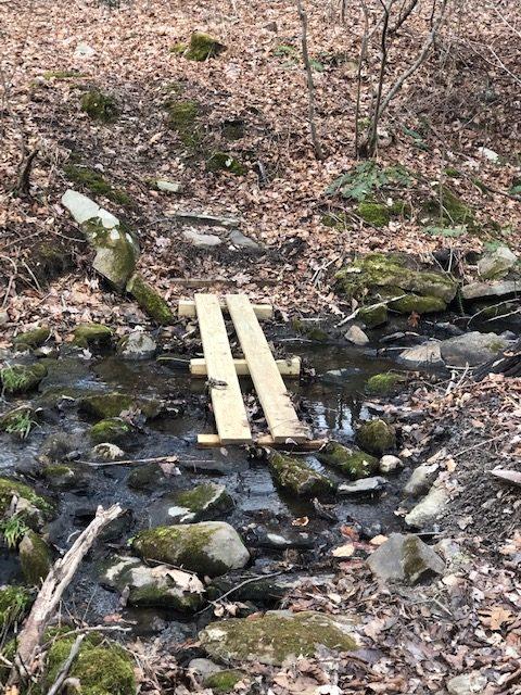 Footbridge Over Creek