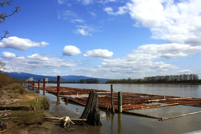 You can witness logging and beautiful scenic vistas from the Poco Trail