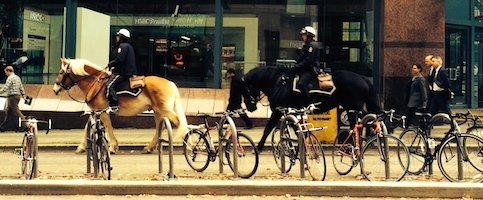 Horses on Hornby separated bike lane