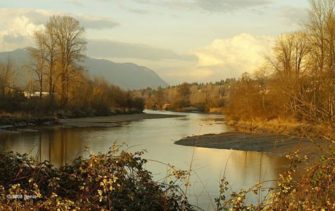The Coquitlam River runs next to the Poco Trail