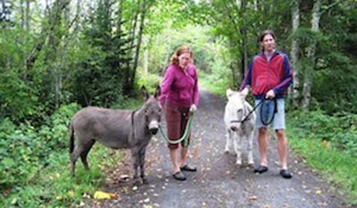 Vancouver cycling - We met minature donkeys on the Galloping Goose trail!