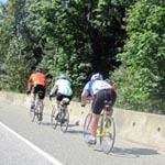 Barnett Highway