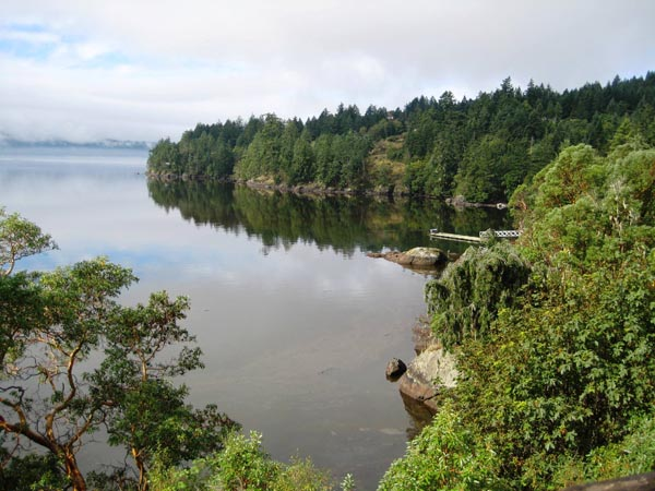 As you approach Sooke on the Galloping Goose Trail, you will see stunning views of the Sooke Basin