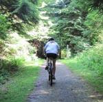 Springboard Trail, Belcarra Park uphill