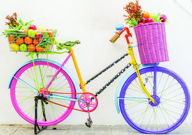 Lots of baskets on a bike go a long way towards making it possible to go grocery shopping on a bike! Moving towards a Car-Free Life