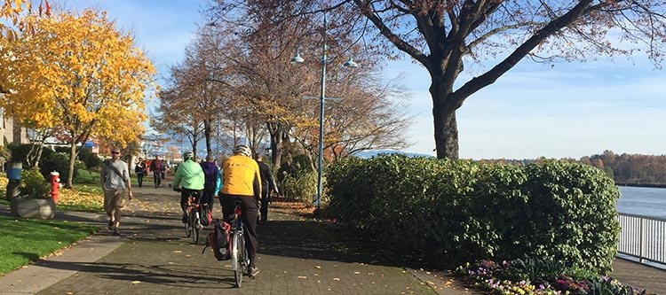 You can cycle on the New Westminster quay all year round. Fall is a particularly beautiful time of the year for enjoying the trees and the immaculately tended gardens. New Westminster cycling