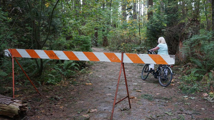 The odd thing was that only one section of the Poco Trail was (ineffectually) blocked off – and that was NOT the part that had any trees down!