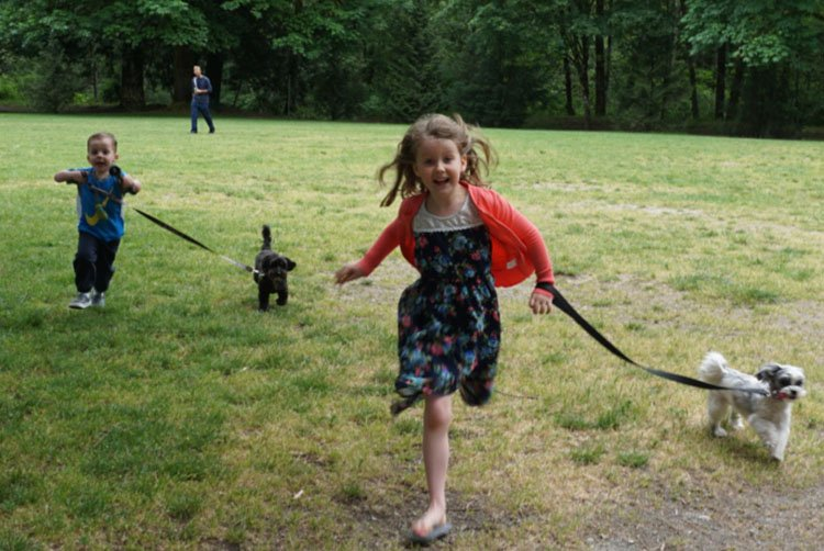 Encourage the children to walk the dogs ... they usually love it, and will give the dogs a good workout too! Babies and Bikes: How to Get Kids Active from the Start
