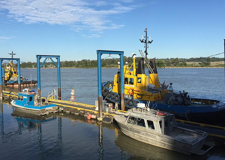 The Fraser River is a working river, so you will be entertained on the New Westminster Quay by a procession of tugs and barges. New Westminster cycling