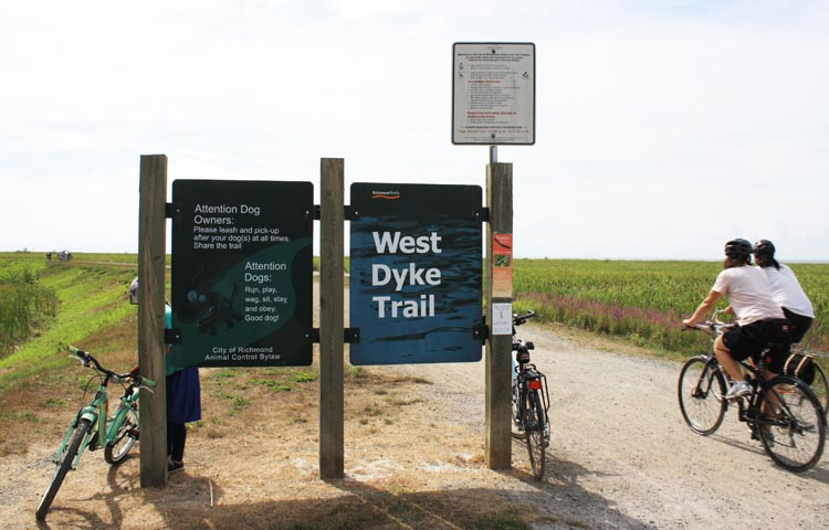 The West Dyke trail is a little hard to find but worth searching for. The West Dyke Trail in Richmond, BC, Canada
