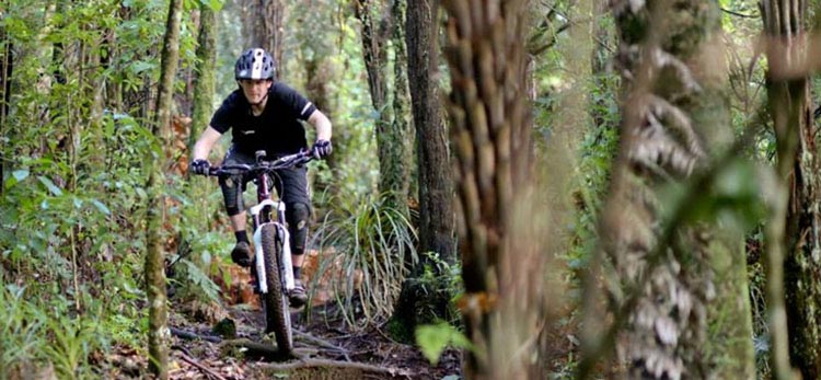 The twists and turns required for mountain biking can help keep your mind sharp. 7 Tips to Keep Mountain Biking after Age 40