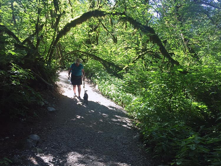 Cycling near Buntzen Lake, British Columbia, Canada. And many parts of the Academy Trail are just beautiful