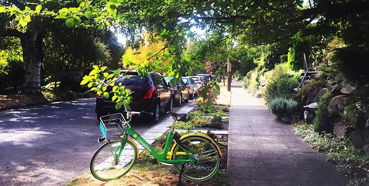 Lime Bikes and Scooters for Shared Transport Options. The first Lime bike we spotted was parked right on the street where we were staying