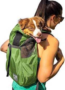 No. 2: K9 Sport Sack - best dog carriers