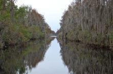 Okefenokee Canal in the Okefenokee Swamp, Georgia